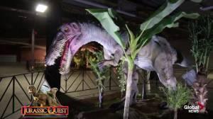 Jurassic Quest dinosaur exhibit takes over Edmonton Expo Centre