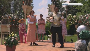 South Shore to miss out on Shakespeare in the park