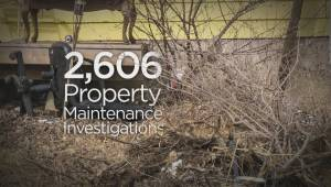City's property bylaw enforcement numbers show lawn parking still an issue (01:44)