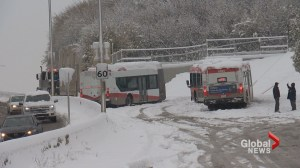 Calgary Transit deals with issues during October snow storm