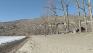 More weeds at Okanagan beaches could be the tradeoff for protecting endangered mussels