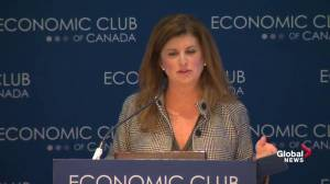 Ambrose calls on Liberal budget to support Canada's energy sector, workers