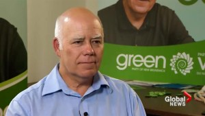 N.B. Green Party leader says they're set up for success in the 2018 election