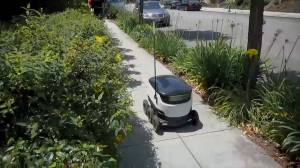 Robot makes grocery delivery in Palo Alto, California