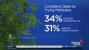 34 per cent of Canadians open to trying pot when legal: poll