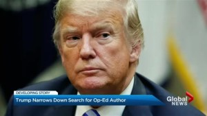 White House aims to zero in on author of 'resistance' op-ed: reports
