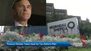 Finance minister takes heat for tax reform plan