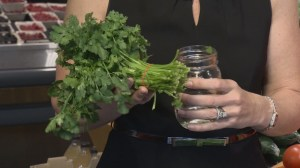 Nutrition: Storing fresh herbs