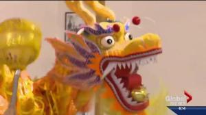 The Year of the Monkey: Celebrating Chinese New Year
