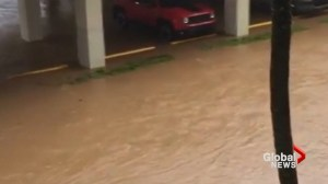 Puerto Rico hit by storm surge, rains as Hurricane Maria pummels island