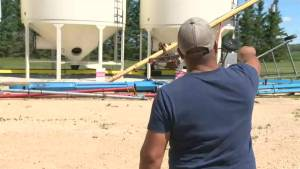 'We didn't know what was coming': A family in Arborg Man., says they are left cleaning up after a weekend storm ripped through their farm