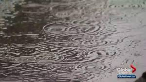 Gloomy weather impacting Edmonton businesses