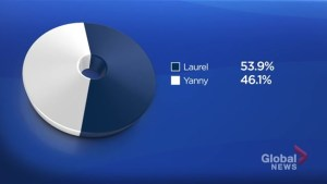 Yanny or Laurel audio recording leads to social media meltdown