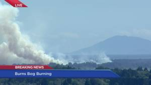 Delta Mayor Lois Jackson on Burns Bog fire (06:39)