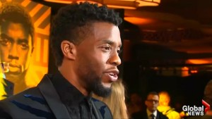 Black Panther smashes box office records with massive opening weekend