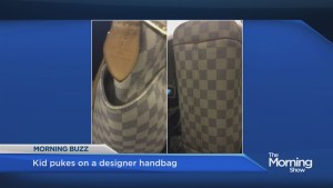 Should a mother whose child vomited on a stranger's $1400 designer handbag pay for it to be replaced?