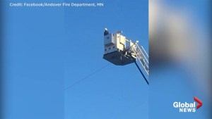 Bald eagle lands on top of firetruck ladder during 9/11 ceremony