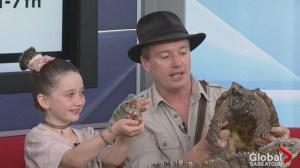 Safari Jeff makes annual Saskatoon stop