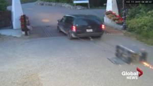 Kelowna winery theft surveillance video