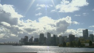 International conference in Vancouver talks about protecting urban forests