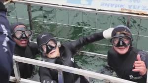 South African centenarian goes shark diving