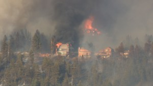 Lake Country neighbourhood devastated by wildfire