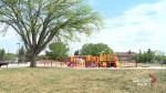 Girl charged in Saskatoon playground assault