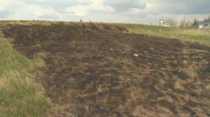 Moose Jaw police investigate eight suspicious fires in Wakamow Valley