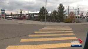 Edmonton councillor suggests free public transit
