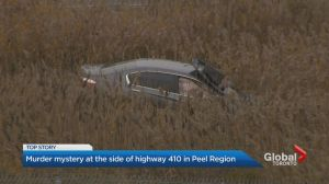 Murder mystery at side of Highway 410 in Mississauga