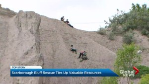 Siblings stranded on Scarborough Bluffs after selfie stunt