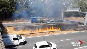 Heat wave triggers fire on grassy median on French highway
