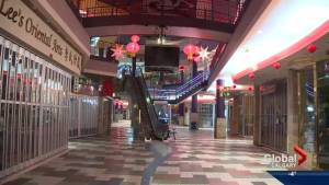 Druh Farrell pushes for redevelopment of Calgary's Chinatown (01:13)
