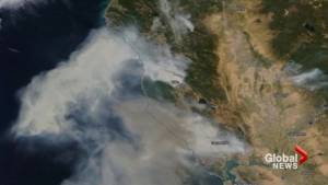 Massive plumes of smoke from wildfires seen rising above California