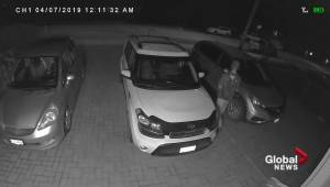 Video captures young male checking for unlocked vehicles