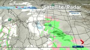 Calgary and southern Alberta under snowfall warning