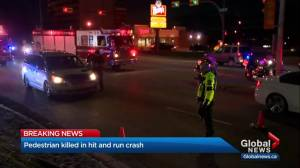 Pedestrian killed in hit-and-run crash in northeast Calgary