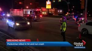 Pedestrian killed in hit-and-run crash in northeast Calgary