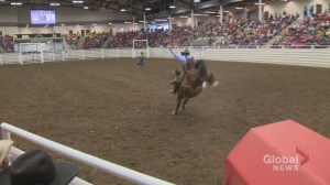 120 rodeo superstars announced to compete in 2018 Calgary Stampede Rodeo