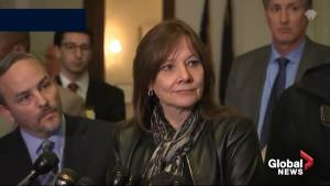 GM CEO faces grilling by Congress over plant closures