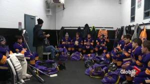 Hockey on the rise among California's youth
