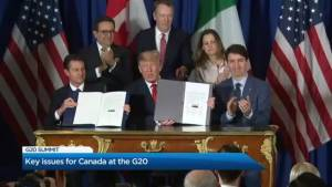 Key issues for Canada at the G20 summit