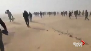 African migrants, undercover reporter discuss Algeria abandoning people in Sahara Desert