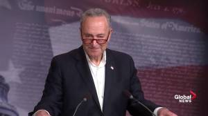 'I find the timing very suspect': Schumer comment on Sessions out as AG