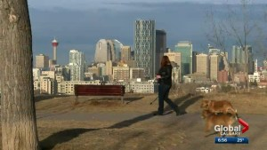 Spotlight on Calgary shines brighter with new role