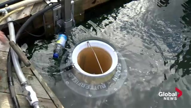 Designed to collect trash from ocean, the first 'Seabin' has just been installed in Canada