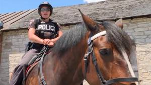 Putting the horsepower in Kingston Police Service