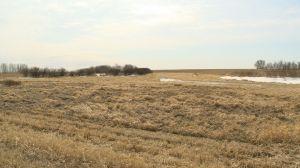 Conservation group raises concerns over proposed potash mine near Regina
