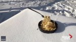 Noodles freeze in mid-air as Calgary battles extreme cold