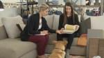 Décor and Design: pet friendly homes